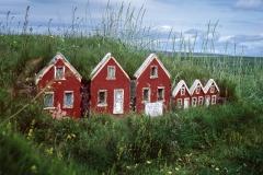 so wohnen isländische Zwerge