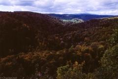 Harz201710-5