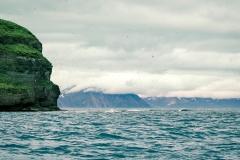Island 2015-1-63