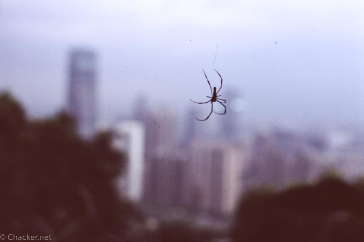 Taipei-18
